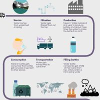 A student team infographic on the life cycle of a water bottle