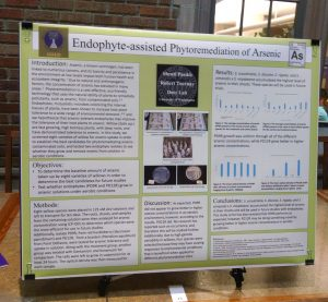 Shruti's Mary Gates Research poster.