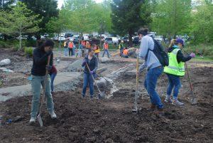Students shoveling in the garden.